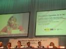 II Cumbre Europea del Pueblo Roma